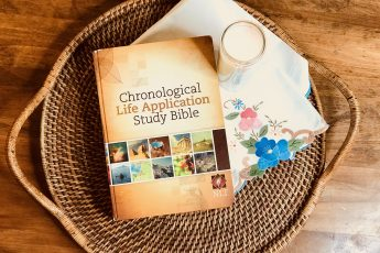 Read Your Bible New Living Translation